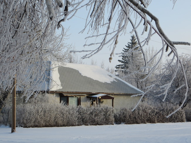 A Frosty Morning Bow Island, Alberta Canada