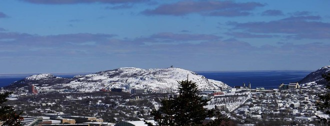 Sunny Townie Day St. John's, Newfoundland and Labrador Canada