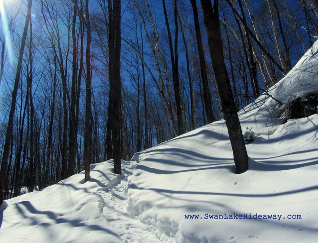 SnowShoeing Bliss Chertsey, Quebec Canada