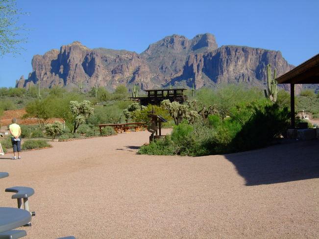 Mountains & Cactus Phoenix, Arizona United States