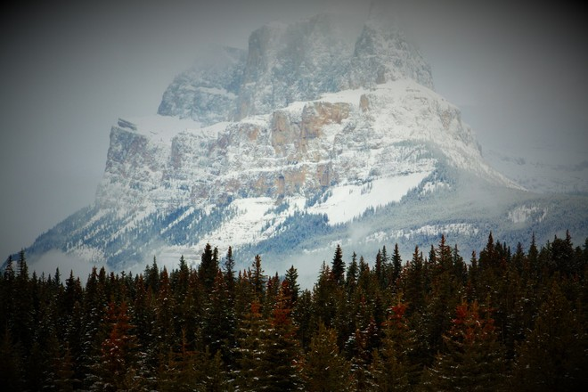 Natures beauty.Coming back from lake louise Calgary, Alberta Canada