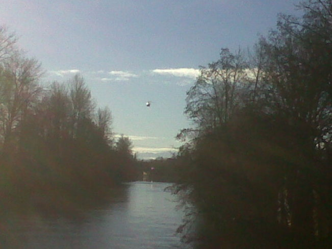 Rcmp helicopter over Courtenay River. Comox Valley, British Columbia Canada