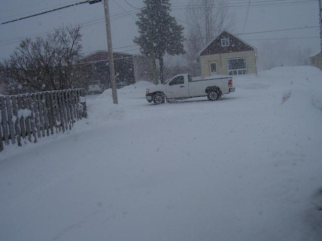 Snow March 10 Temiskaming Shores, Ontario Canada