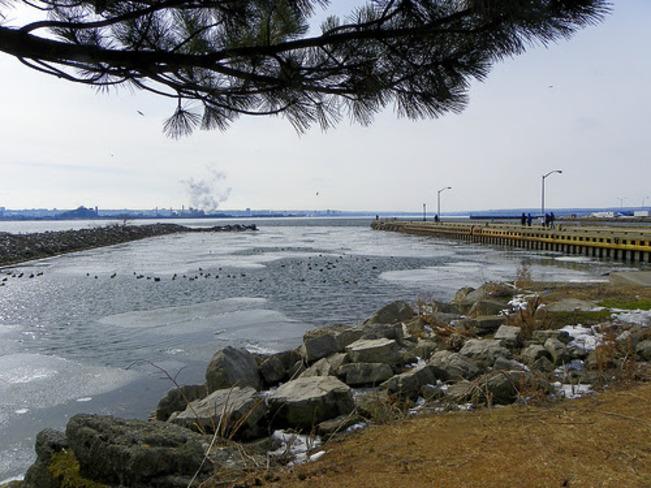 An Icy Cold Swim Burlington, Ontario Canada