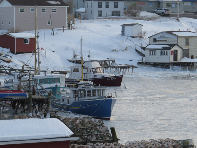 Ice in the Harbour Arnold's Cove, Newfoundland and Labrador Canada