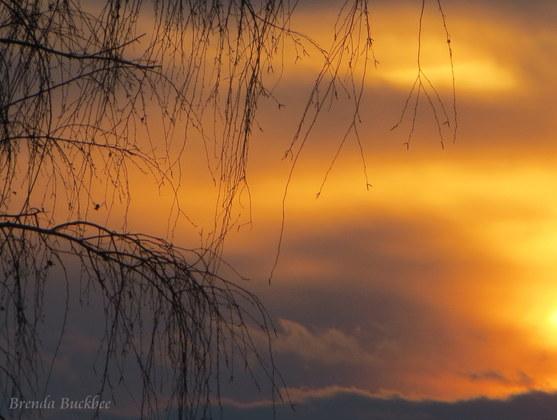 Tonights Window Sunset