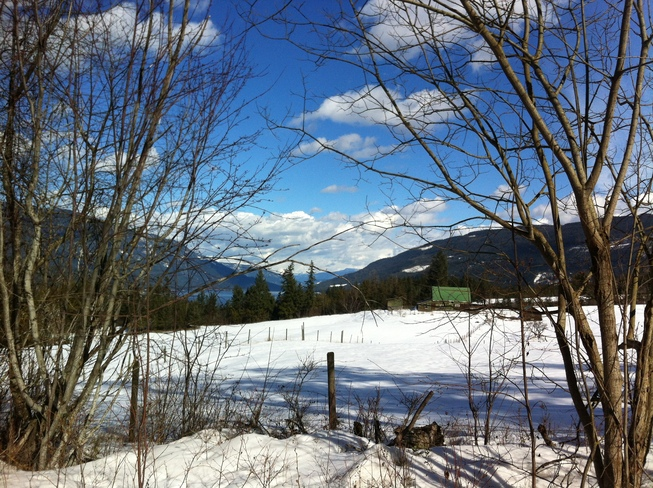 A Lovely Day in The Shuswap Salmon Arm, British Columbia Canada