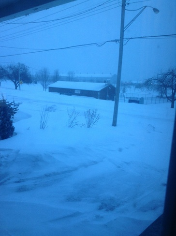 blizzard Fort Erie North, Ontario Canada