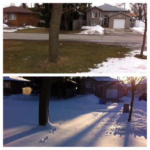 March 11th vs March 12th Windsor, Ontario Canada