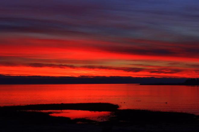 Goooood morning! Royston, British Columbia Canada