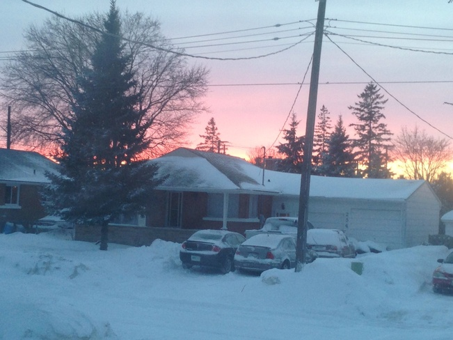 After the storm on Mar. 12 2014 Kitchener, Ontario Canada
