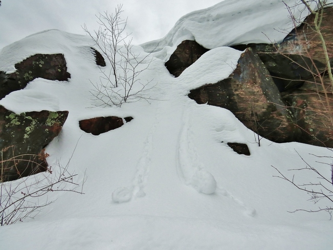 Mini avalanches as snow piles up? North Bay, Ontario Canada