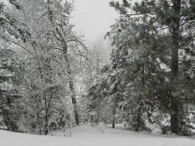 Let it snow again Sudbury, Ontario Canada