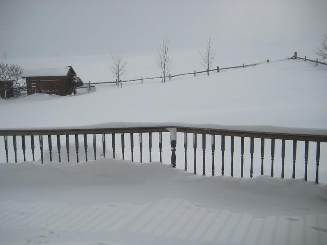 my back yard Teeswater, Ontario Canada