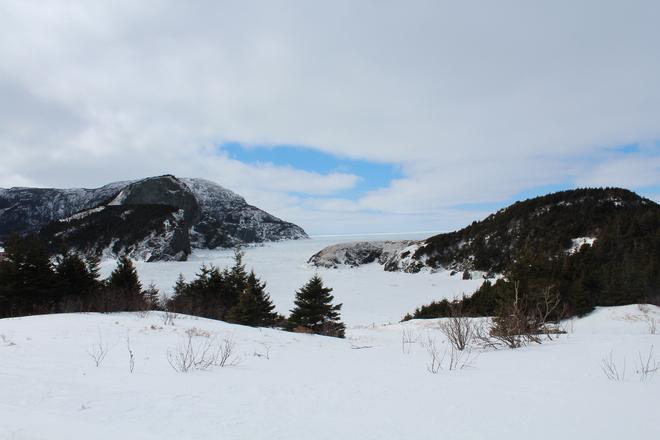 Nice View Corner Brook, Newfoundland and Labrador Canada