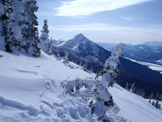 View from the top. Revelstoke, British Columbia Canada