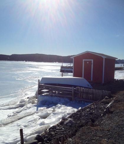 sunny day Placentia, Newfoundland and Labrador Canada