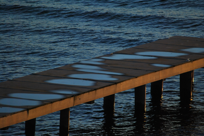 Puddles on the Dock South Kelowna, British Columbia Canada