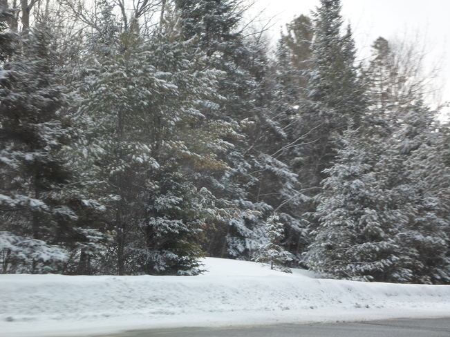 What 1 st day of Spring! Elliot Lake, Ontario Canada