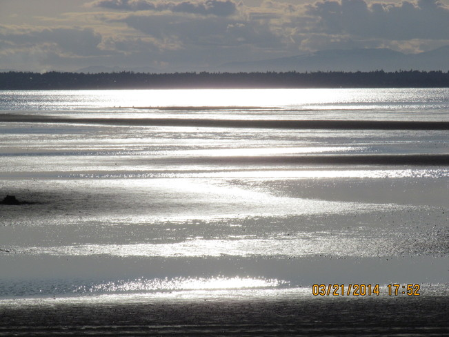 Evening Reflections at CB Crescent Beach, British Columbia Canada