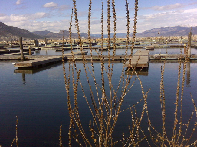 Beautiful Day at the Marina Penticton, British Columbia Canada