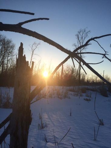 sunrise Piney, Manitoba Canada