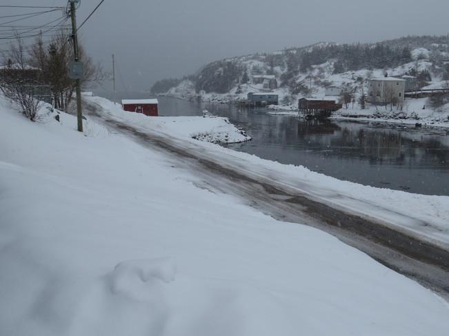 on no we got snow Rock Harbour, Newfoundland and Labrador Canada