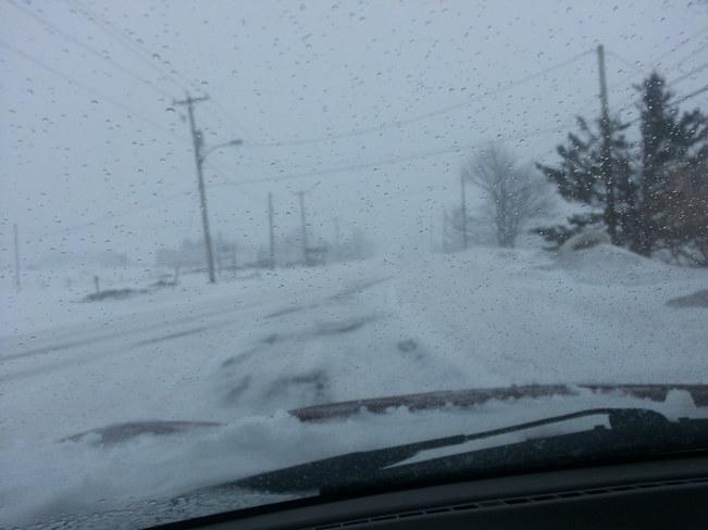 Spring?? St. John's, Newfoundland and Labrador Canada