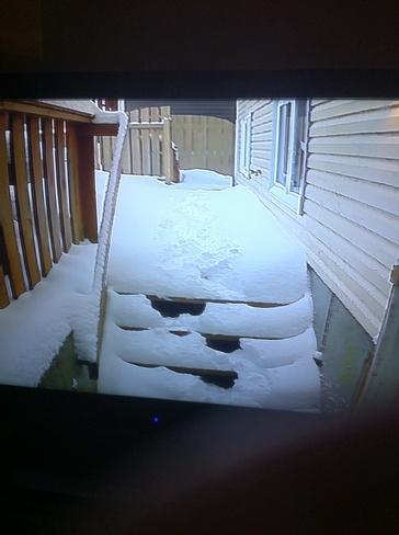 more snow Paradise, Newfoundland and Labrador Canada