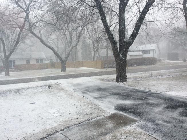 snow snow go away! St. Clair Beach, Ontario Canada
