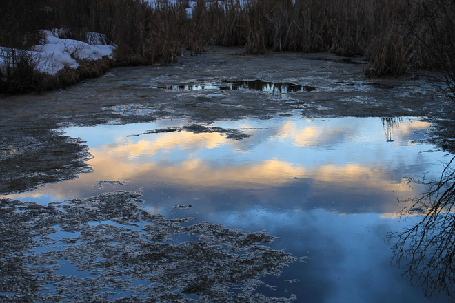 Sunset Reflected in Melted Snow Puddle Banff, Alberta Canada