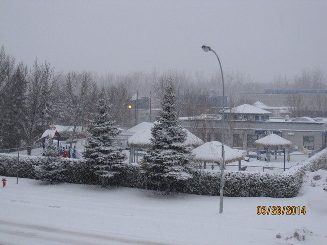 Snowing again ! ... Messy weather but it looks beautiful :) Montréal, Quebec Canada