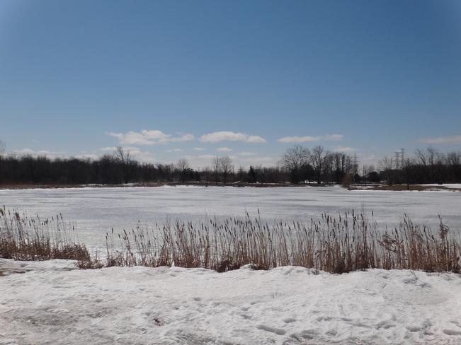 Frozen lake. Toronto, Ontario Canada