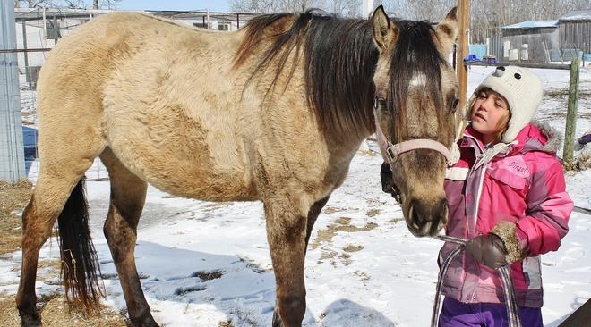 Haley & Misey Brandon, Manitoba Canada