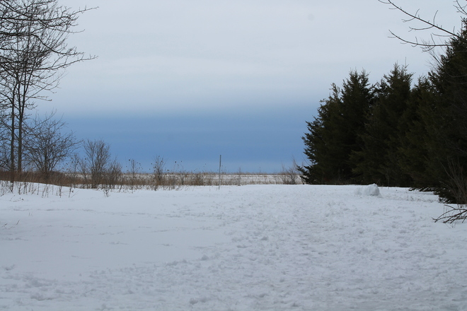 Mostly Cloudy Dull Day @ Lemoine Conservation Kingston, Ontario Canada