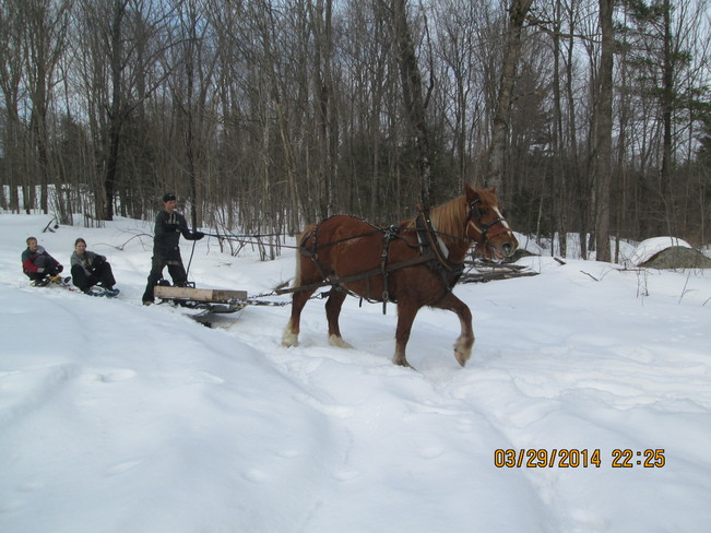REDNECK KIDS FOR MAPLE SYRUP SEASON Northbrook, Ontario Canada