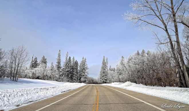 The Ice Fog Effect Dugald, Manitoba Canada