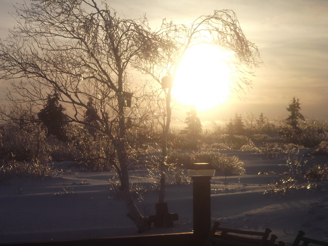 after the 3 day ice storm. North Sydney, Nova Scotia Canada