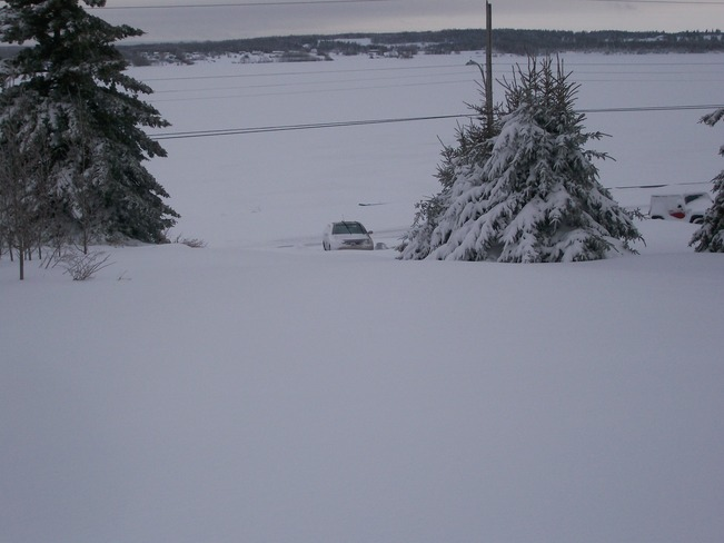 Not getting up my Driveway today ! Sydney, Nova Scotia Canada