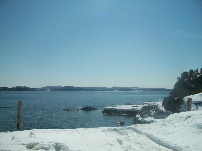 see the sea Burlington, Ontario Canada