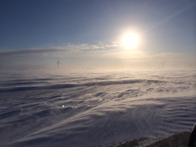 Snowy Fields Windsor, Ontario Canada