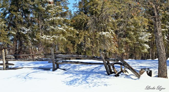 Old Gray Fence Woodridge, Manitoba Canada