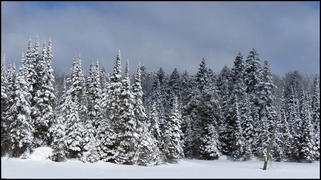 Milliken Mine Rd. after the snow storm. Elliot Lake, Ontario Canada