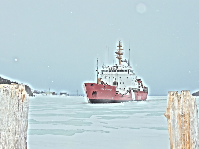 Ice Breaker in Comfort Cove St. John's, Newfoundland and Labrador Canada