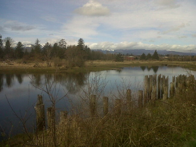 Courtenay River Estuary under coulds. Comox Valley, British Columbia Canada