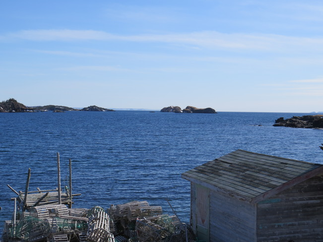 walking weather Southern Harbour, Newfoundland and Labrador Canada
