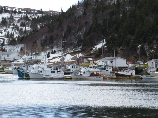 Fishing season is starting Baine Harbour, Newfoundland and Labrador Canada