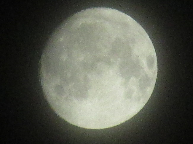 The Moon 1 am this morning