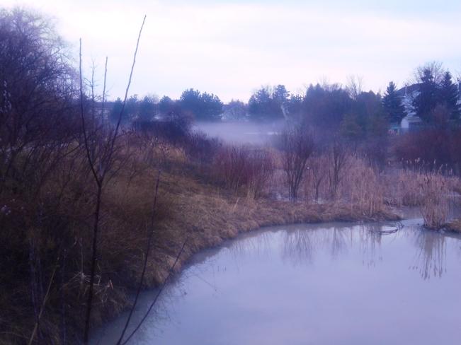 Fog rolling in 1 1/2 hour before thunderstorm Innisfil, Ontario Canada