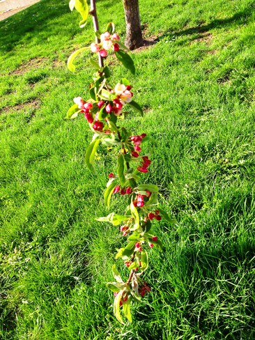Stuck on you! Vancouver, British Columbia Canada